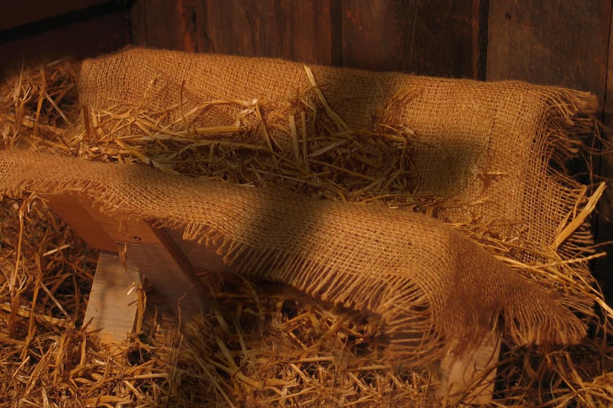 Image result for manger'
